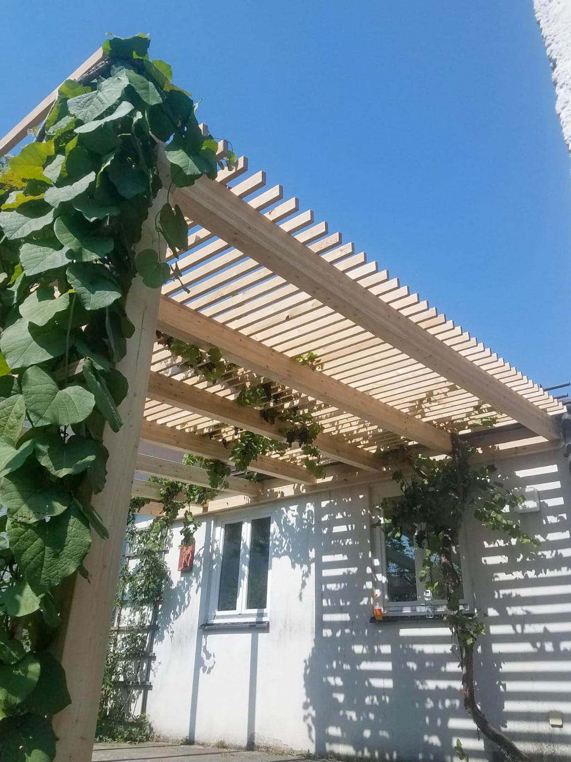 Holz-im-Garten-Weinpergola